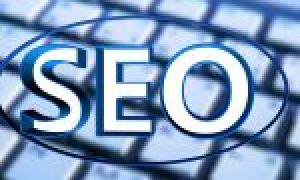 Hosting for SEO,  create a network of sites in three days.